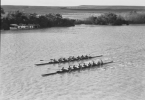 Kings Cup rowers on the River Murray at Murray Bridge History Trust of South Australia GN14242